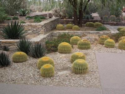 Desert Yard Makeover In 5 Easy Steps Earthtones